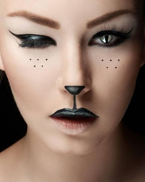 tipos de maquiagens de gatinha